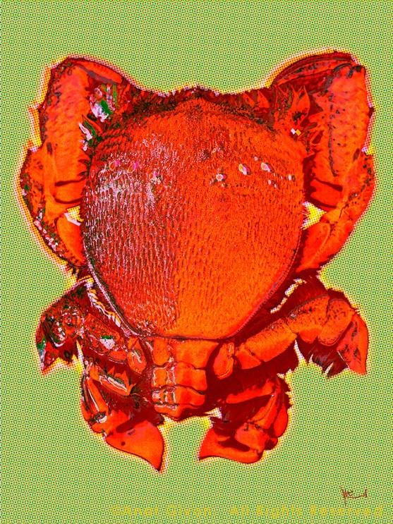 """Orange Crab"" -  Dot Cod Seafood Restaurant, HK"