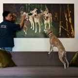 Artwork Installed - Client closely inspects proceedings - Private Collection