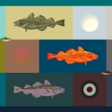 Fish Dots & Cods 2